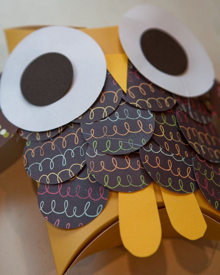 owl gift boxes